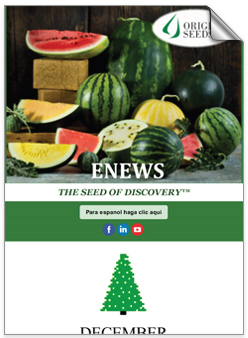 ENEWS THE SEED OF DISCOVERY - English