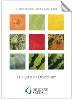 Origene Seeds Catalogue