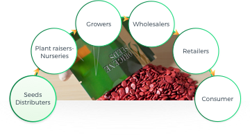 Seeds Distributers