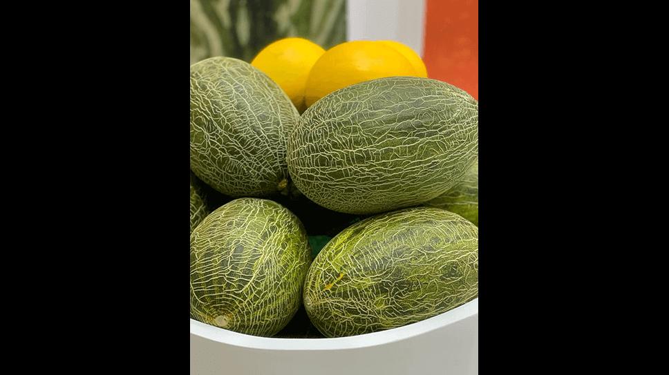 Fruit Logistica - 2020, Berlin, Germany