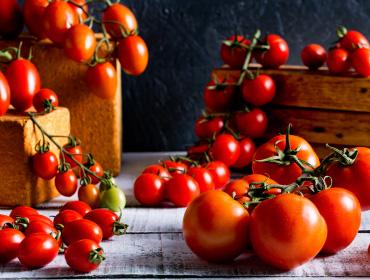 Tomatos Collection