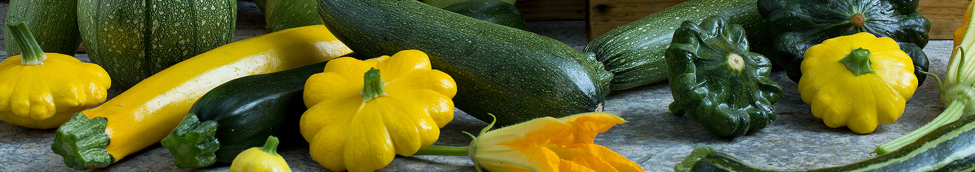 Bring the sun to your taste buds with a great zucchini soup